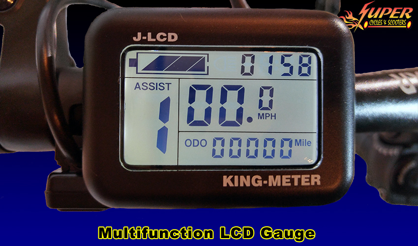 Multifunction LCD Gauge