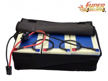 36v-12ah Deep Cell-Battery Pack with Bag
