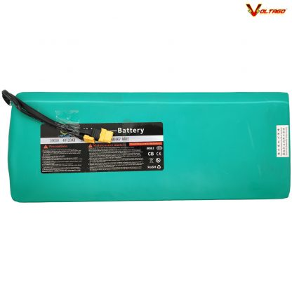 VT-5 48v 20AH Lithium Battery